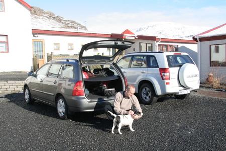 Собака - большая редкость в Исландии