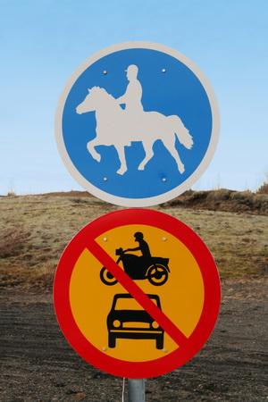 Лошадям везде у них дорога, лошадям везде у них почет!