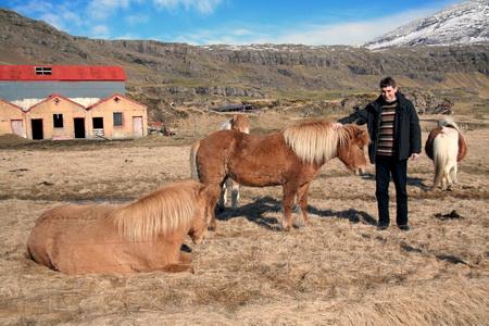 Очень популярны верховые прогулки на исландских лошадях