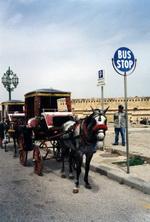 На Мальту по делу