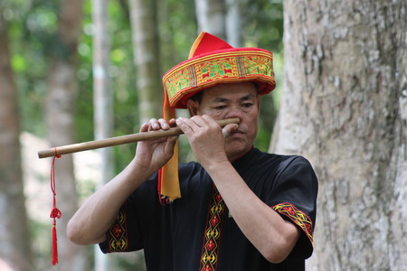 Музыкант играющий носом