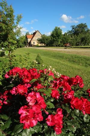 Территория представляет собой благоухающий сад