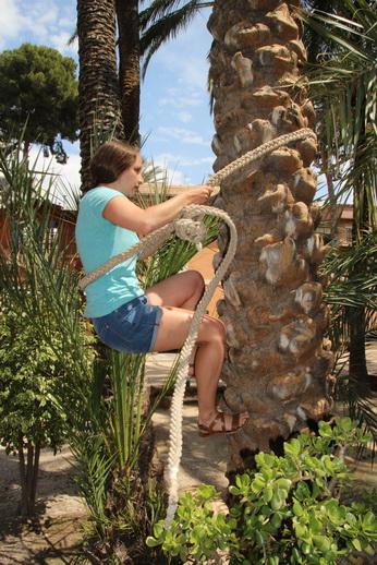 Музей пальмовой рощи
