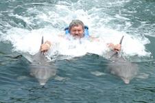 Транспортировка дельфинами