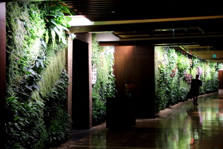 Отель «Sofitel The Palm»