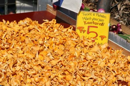 Самыми популярными грибами в Финляндии являются лисички
