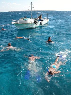 Плавая с трубкой и маской, можно оценить красоты местных рифов