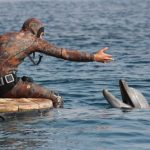 Израиль. Дельфиний риф