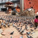 Непал. Красная площадь Катманду