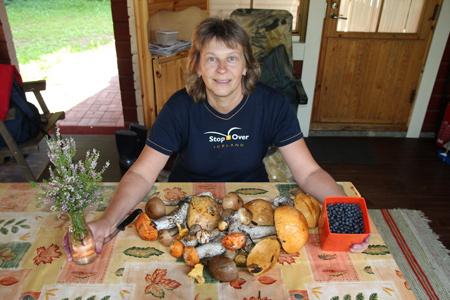 В Каннускоски грибы можно собирать прямо у дома