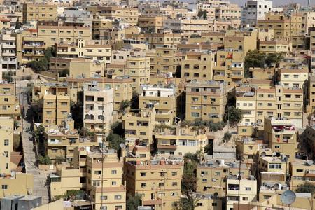 С вершины Цитадели старый Амман похож на муравейник или пчелиные соты