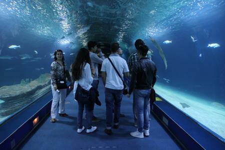 Аквариум вмещает 42 млн. литров воды