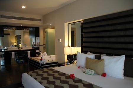 Спальня с совмещенной ванной