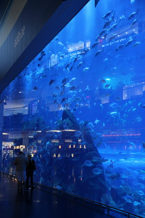 "Аквариум в ""Dubai Mall"""