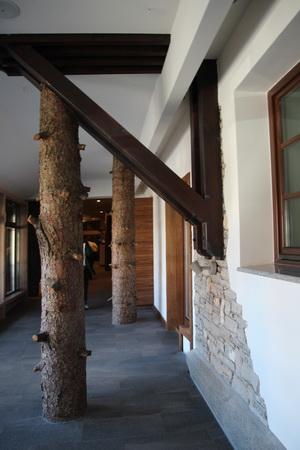 Стволы сосен выполняют роль колонн