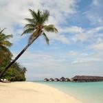 Сейшелы: французский шарм с индийскими специями