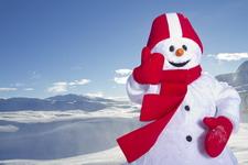 Снеговик Валле