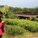 Руанда. Роскошь в чайных интерьерах