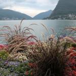Италия. Цветочная Ривьера
