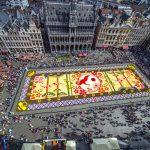 Бельгия. В Брюсселе появится новый ковер