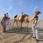 Катар вошел в ТОП-10 самых открытых стран в мире